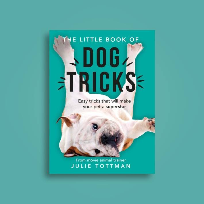 The Little Book of Dog Tricks: Easy tricks that will give your pet the  spotlight they deserve - Julie Tottman Near Me | NearSt