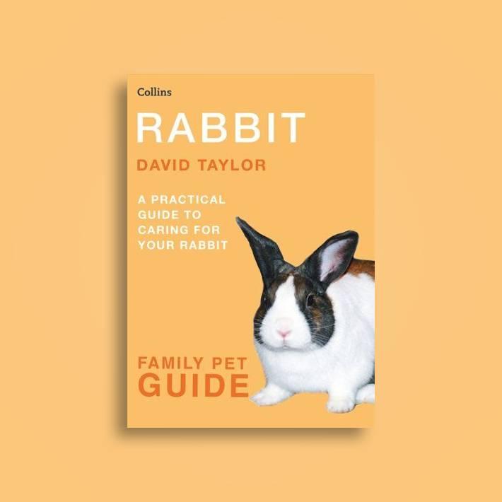 Raising Healthy Rabbits