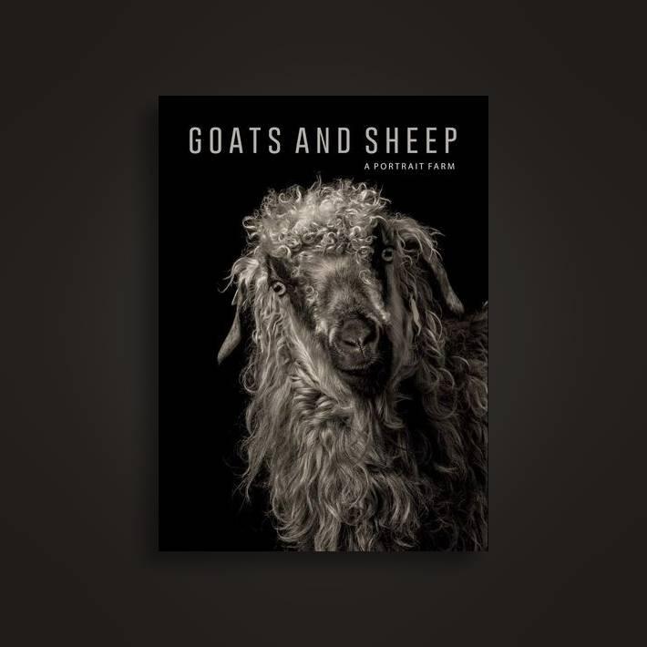 Goats and Sheep  A Portrait Farm - Kevin Horan Near Me   NearSt