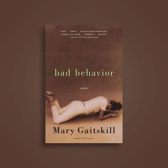 Image result for bad behavior mary gaitskill